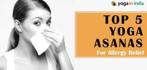 Yoga asanas for allergy relief